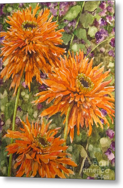 Orange Double Echinacea Metal Print by Karen Olson