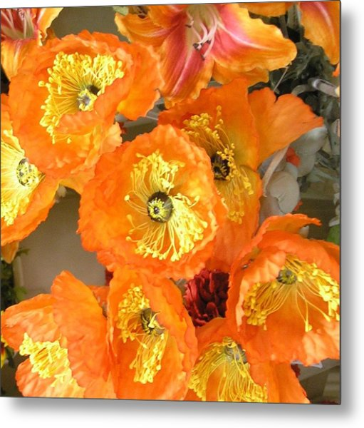 Orange Joy Metal Print