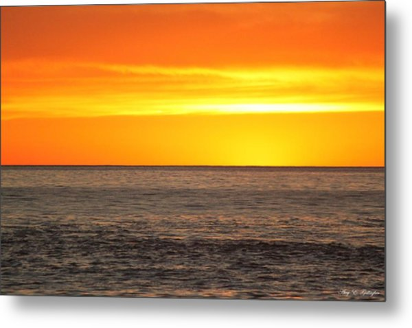 Orange Sherbet Metal Print