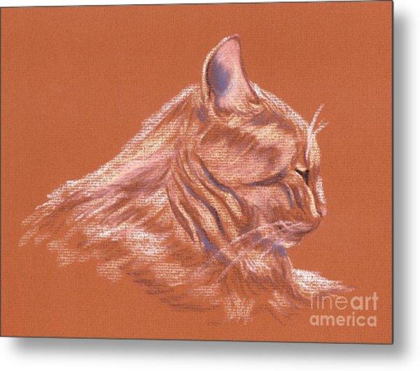 Orange Tabby Cat In Profile Metal Print by MM Anderson