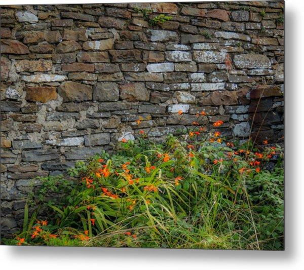 Orange Wildflowers Against Stone Wall Metal Print