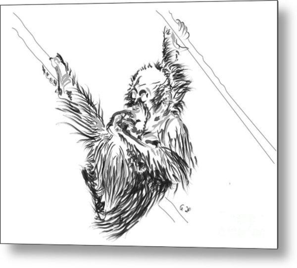 Orangutan Baby 2 Metal Print