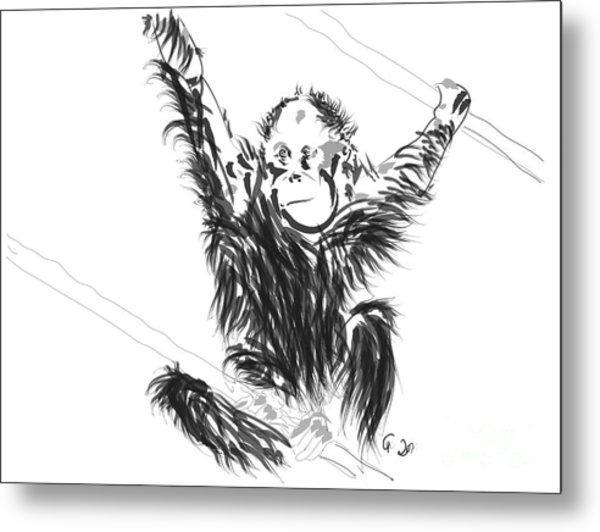 Orangutan Baby Metal Print