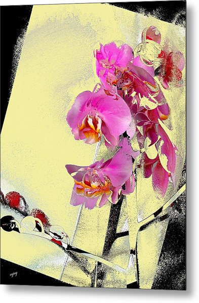 Orchid And Cream Metal Print by Martin Jay