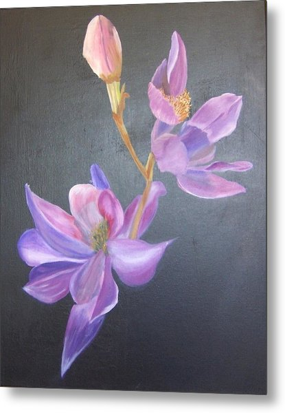 Orchid Metal Print by Catherine Swerediuk