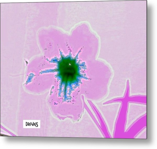 Metal Print featuring the photograph Orchid Dream by David Clark