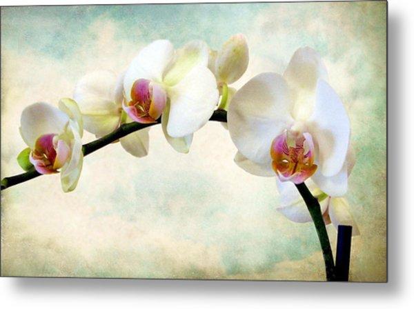 Orchid Heaven Metal Print