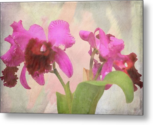 Orchid In Hot Pink Metal Print