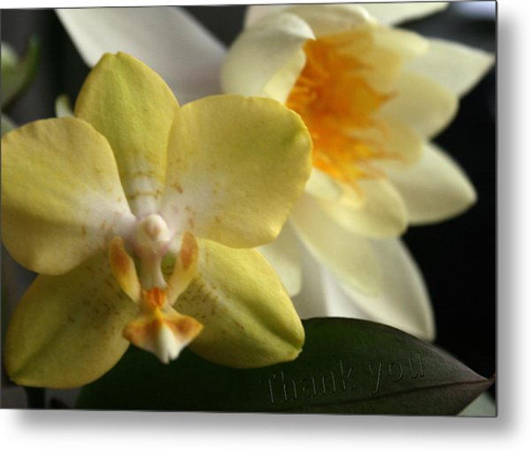 Orchid Lily  And A Reminder To Utter The Words Thank You.  Metal Print