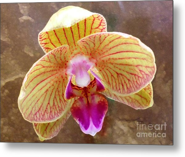 Orchid On Marble Metal Print