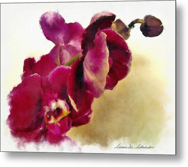Orchids No. 5 Metal Print