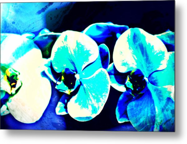 Orchids Of Ranetta Metal Print