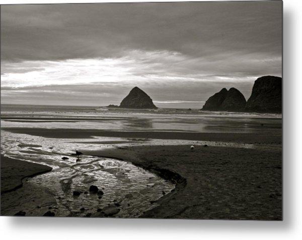 Oregon Seashore Metal Print