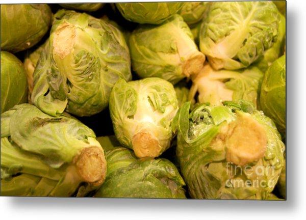 Organic Cabbage Metal Print