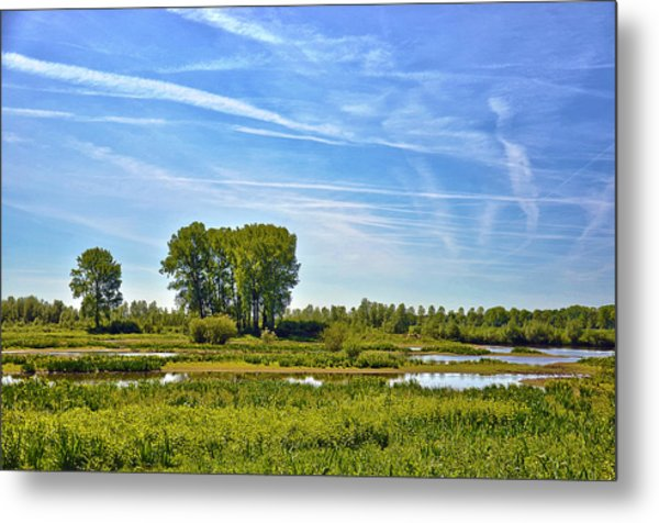 Ossenwaard Near Deventer Metal Print
