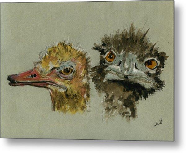 Ostrichs Head Study Metal Print