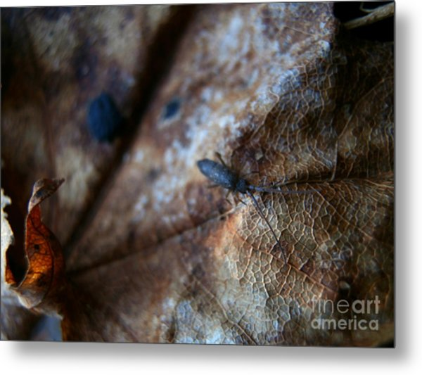 Out From The Blur Metal Print by Steven Valkenberg