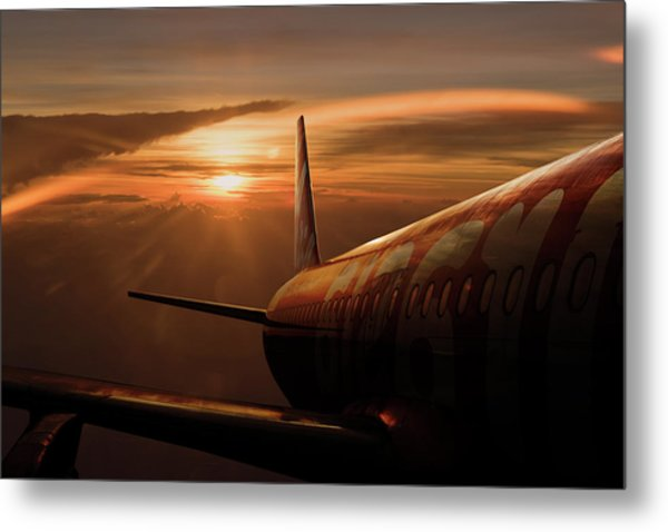 Out Of The Flight Metal Print