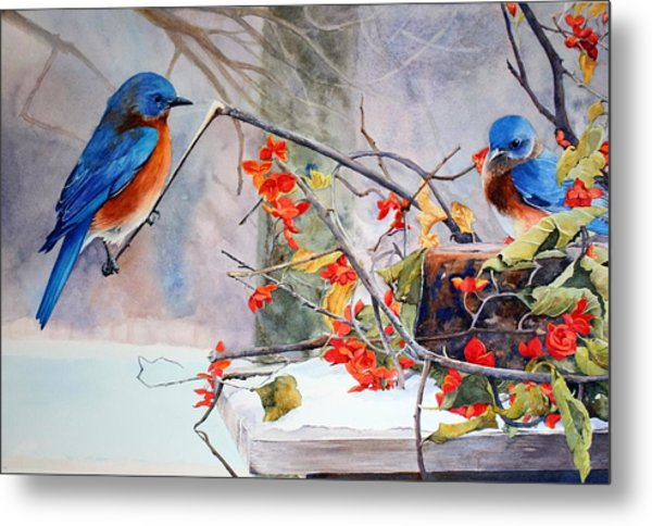 Out On A Limb Metal Print by Brenda Beck Fisher