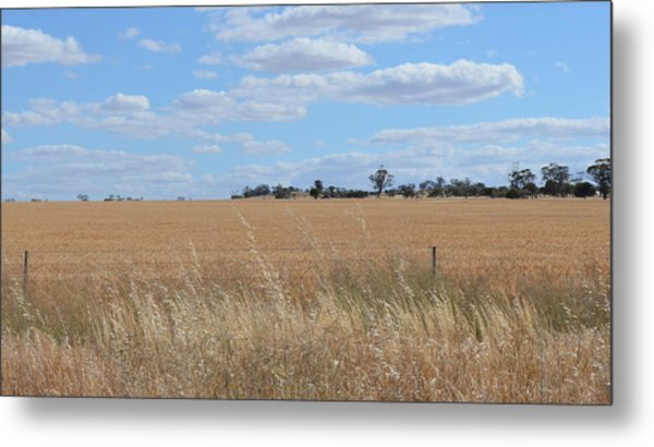 Outback  Metal Print