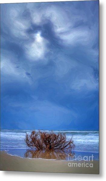 Outer Banks - Driftwood Bush On Beach In Surf II Metal Print by Dan Carmichael