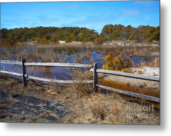 Over The Fence Metal Print by Robert Pilkington