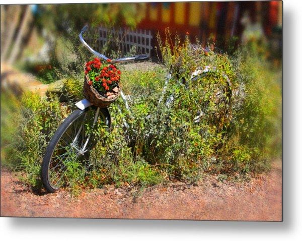 Overgrown Bicycle With Flowers Metal Print