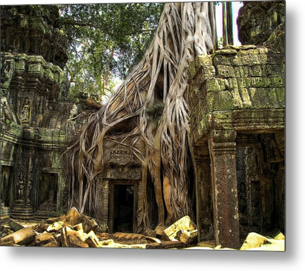 Overgrown Jungle Temple Tree  Metal Print