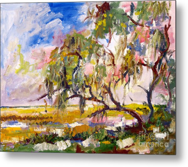Overlooking The Marsh On Jekyll Island Georgia Metal Print