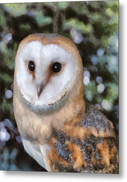 Metal Print featuring the digital art Owl - Bright Eyes 2 by Paul Gulliver