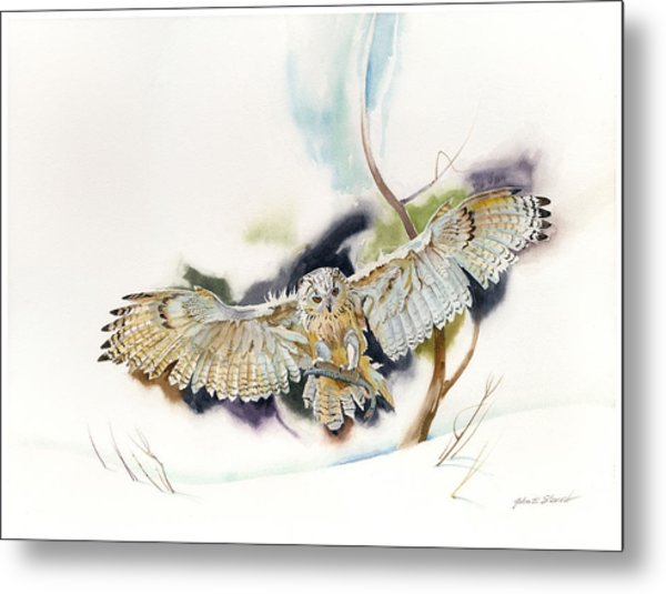 Owl Catches Lunch Metal Print