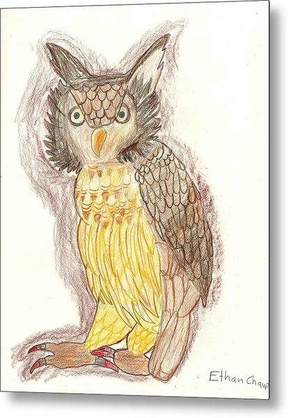 Wise Owl Metal Print by Ethan Chaupiz