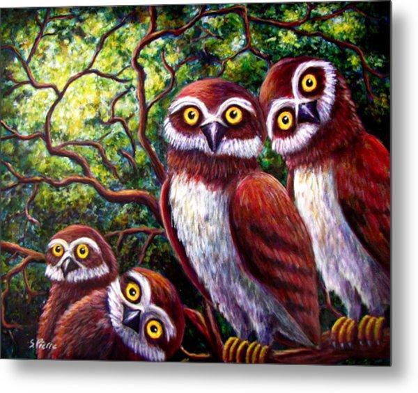 Owl Family Metal Print by Sebastian Pierre