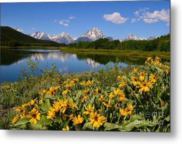 Oxbow Bend Splendor Metal Print
