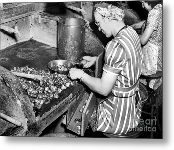 Oyster Industry Shuckers 1948 Metal Print