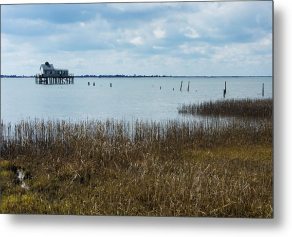 Oyster Shack And Tall Grass Metal Print