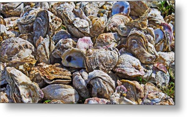 Oysters 02 Metal Print