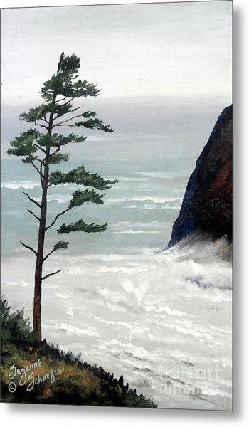 Pacific Northwest Soft Ocean Breezes Metal Print by Suzanne Schaefer