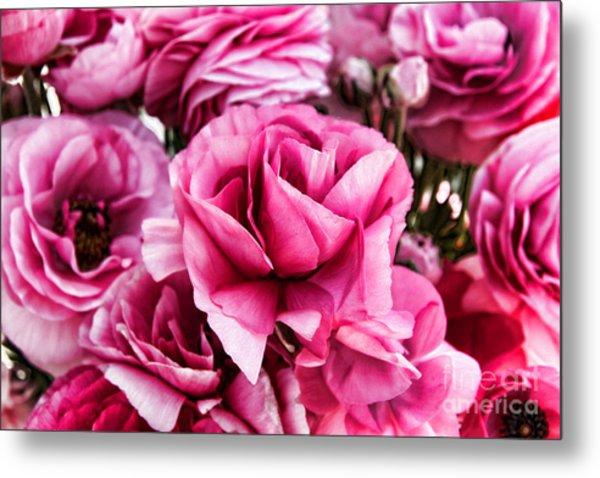 Paint Me Pink Ranunculus Flowers By Diana Sainz Metal Print