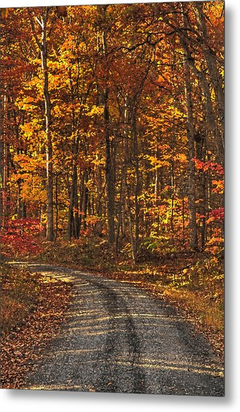 Painted Autumn Country Roads Metal Print