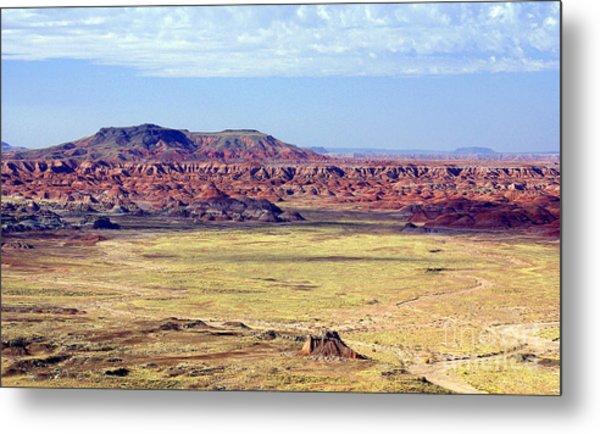 Painted Desert Vista Metal Print by Douglas Taylor