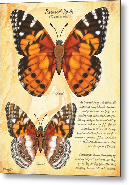 Painted Lady Butterfly Metal Print by Tammy Yee