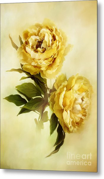 Painted Peonies Metal Print