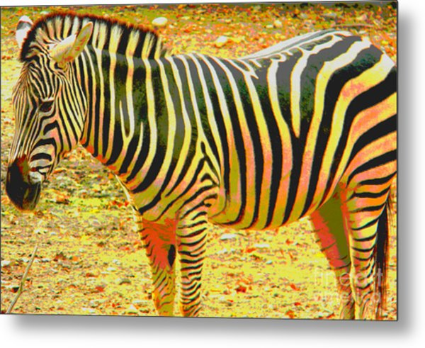 Painted Zebra Metal Print