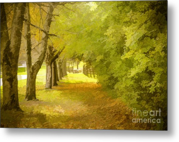 Painterly Pathway Metal Print