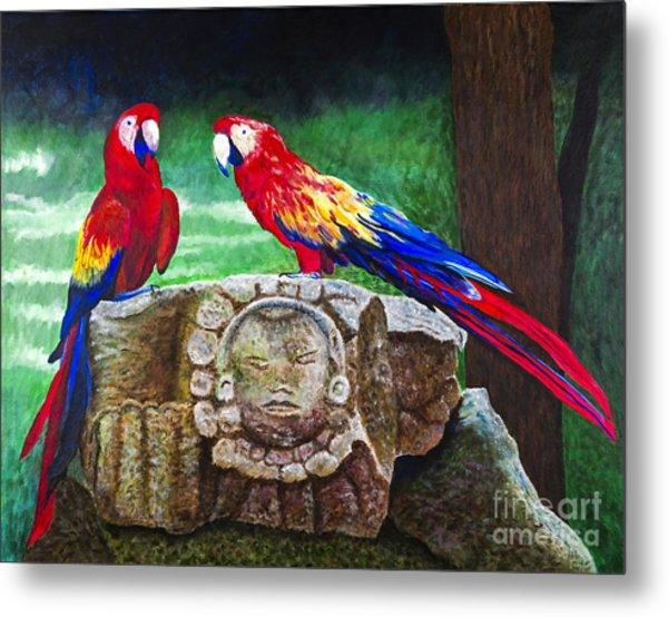 Pair Of Parrots By Barbara Heinrichs Metal Print by Sheldon Kralstein
