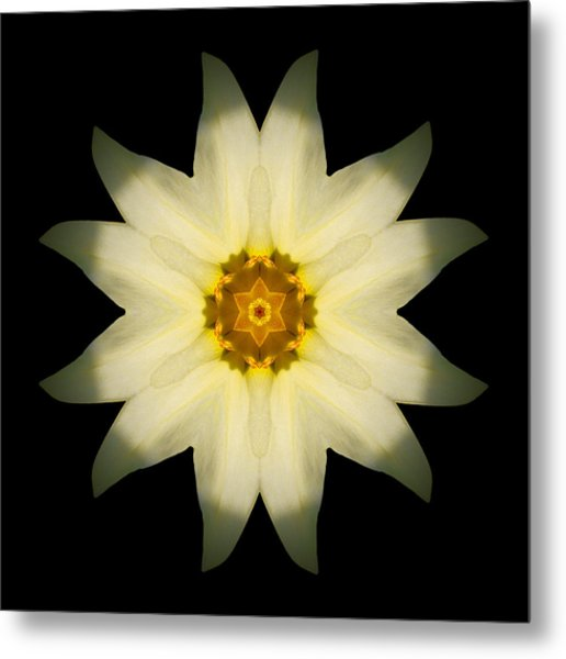 Pale Yellow Daffodil Flower Mandala Metal Print