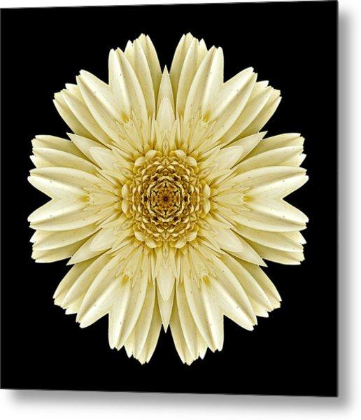 Pale Yellow Gerbera Daisy IIi Flower Mandala Metal Print