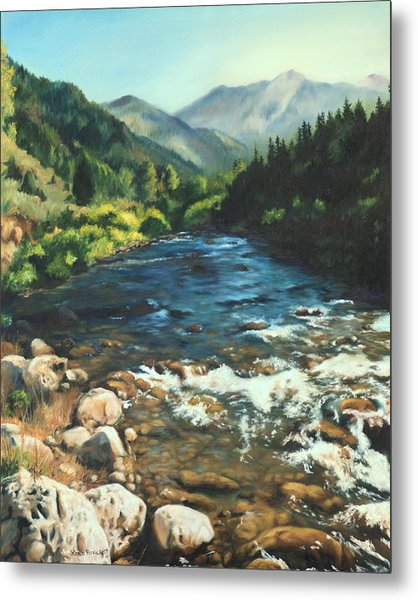 Palisades Creek  Metal Print