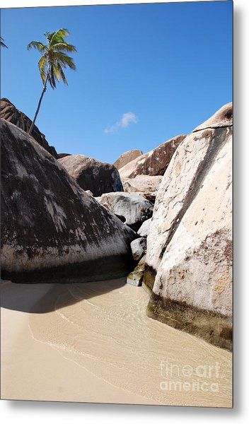 Palm At The Baths Virgin Islands Metal Print
